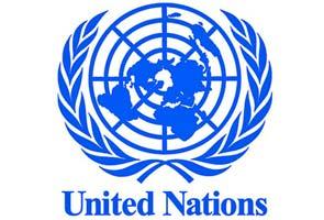Image result for united nations logo